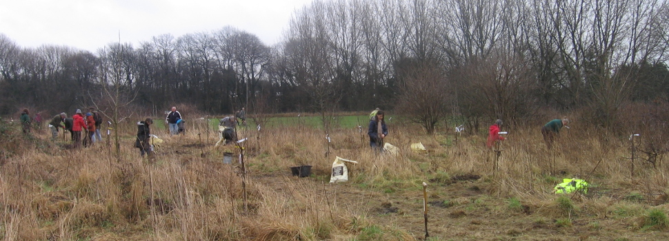 Gatley Carrs Task Day planting the orchard